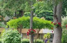 Yassen Holiday Village Sunčev Breg